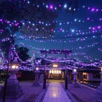 LED装飾(星神社様 七夕祭り)